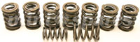 Mini dual valve-springs, RACE TYPE, 280LB
